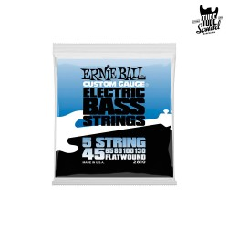 Ernie Ball 2810 Flatwound 5 String Bass 45-130