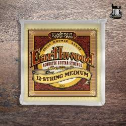 Ernie Ball 2012 Earthwood  80-20 Bronze Acoustic 12 String Medium 11-52