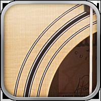 . Gracias al gusto y la simplicidad de su artesanía, las guitarras Taylor ofrece en todas sus Series una armonía en el diseño. Este delicado trabajo tiene como resultado una influencia indeleble en la estética moderna de sus guitarras.