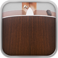 . Las maderas duras de árboles de hoja caduca se utilizan exclusivamente para los Aros y Fondo. Estas partes forman el armazón de la caja acústica de la guitarra, y mejoran la rigidez y el sustain del instrumento. Cada especie de madera también aporta su toque acústico particular según sus distintas frecuencias de resonancia. Las maderas se pueden considerar como controles de tono naturales con armónicos variables y diferentes proporciones de graves, medios y agudos.